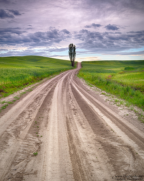 "2017-09-08 - 1st Place - Pictorial Competition - ""Dusty Dirt Road"""