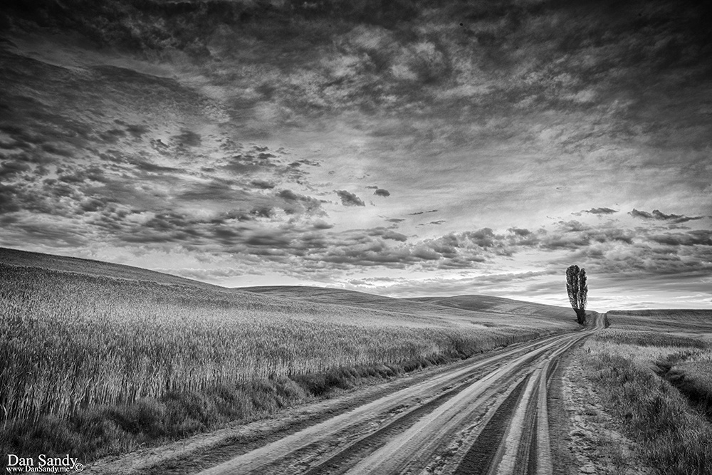 """2018-09-07 - 2nd Place - B&W Competition - """"JW Baylor Road"""""""