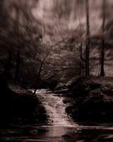 "2012-02-24 ""B&W Waterfall"""