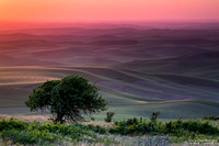 """2017-07-07 - 3rd Place - Pictorial Competition - """"Solitary Sunset"""""""