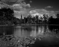 """2012-03-09 - Did Not Place - Projection Competition - """"Lilly Pond"""""""