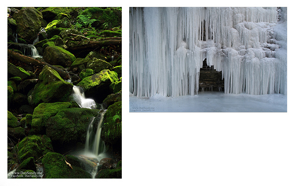 2012-06-29 - Nature