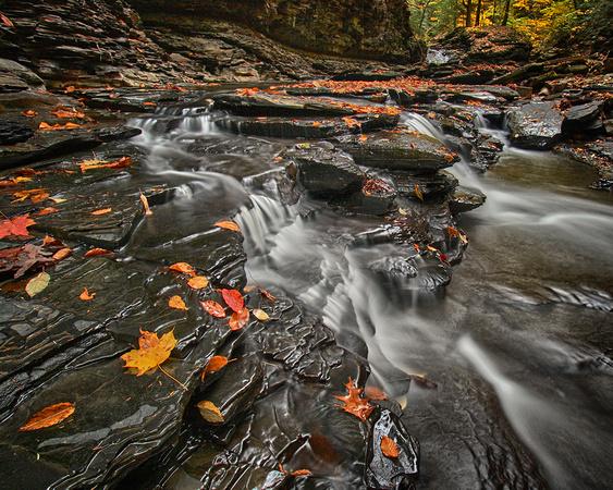 """2013-11-08 - """"The Falls"""""""