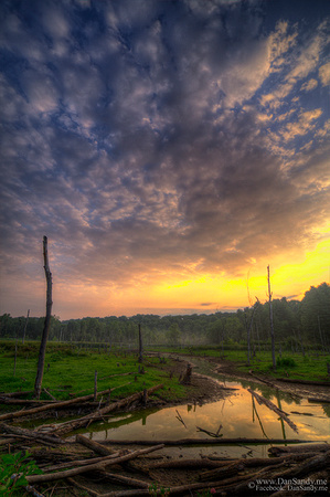 """2015-02-21 – Honorable Mention – Nature Competition (Color Category) - """"Sunset Marsh"""""""