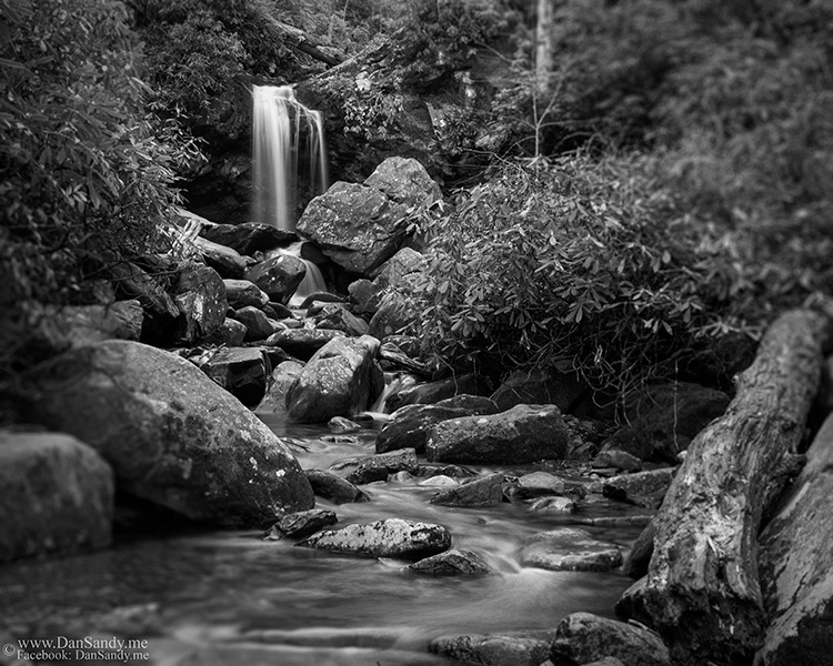 Below Grotto Falls in the Smoky Mountain National Park