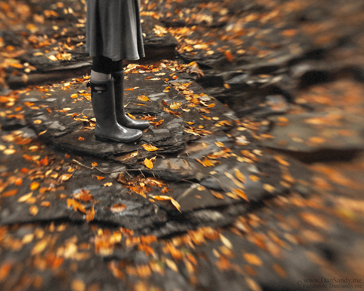 """11/06/2015 - Did Not Place - Pictorial category - """"Exploring Autumn"""""""
