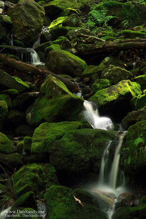 "2012-06-29 - ""Mossy Falls"""