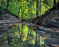 """11/06/2015 - Did Not Place - Nature Competition - """"Emerald Reflections"""""""