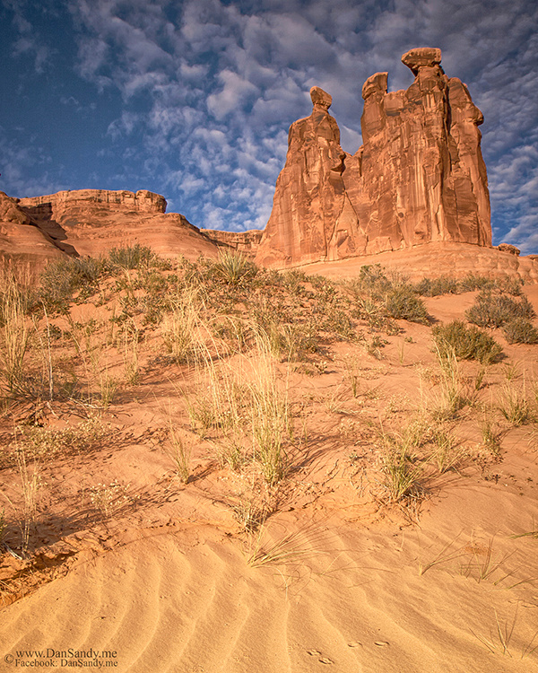 """2016-05-21 - Photograph of the Year - Year end competition - Nature Category - """"The Three Gossips at Sunrise"""""""